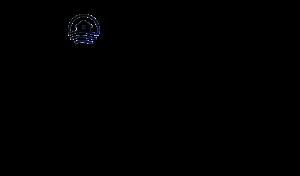 Wolfgang Sailer Logo